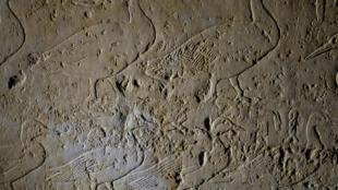 Dessin de canards et d'oies sur un relief en pierre du temple de Sepedhotep à Saqqarah en Egypte.