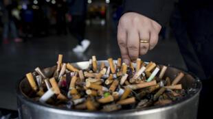 Guntun karar taba sigari