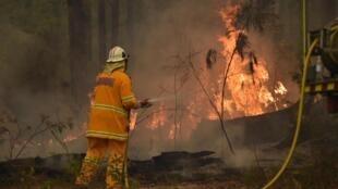 Lính cứu hỏa Úc tác nghiệp ở thành phố New South Wales, Jerrawangala, ngày 01/01/2020