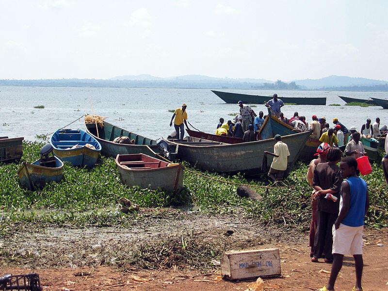 Uvuvi katika ziwa Lake Victoria