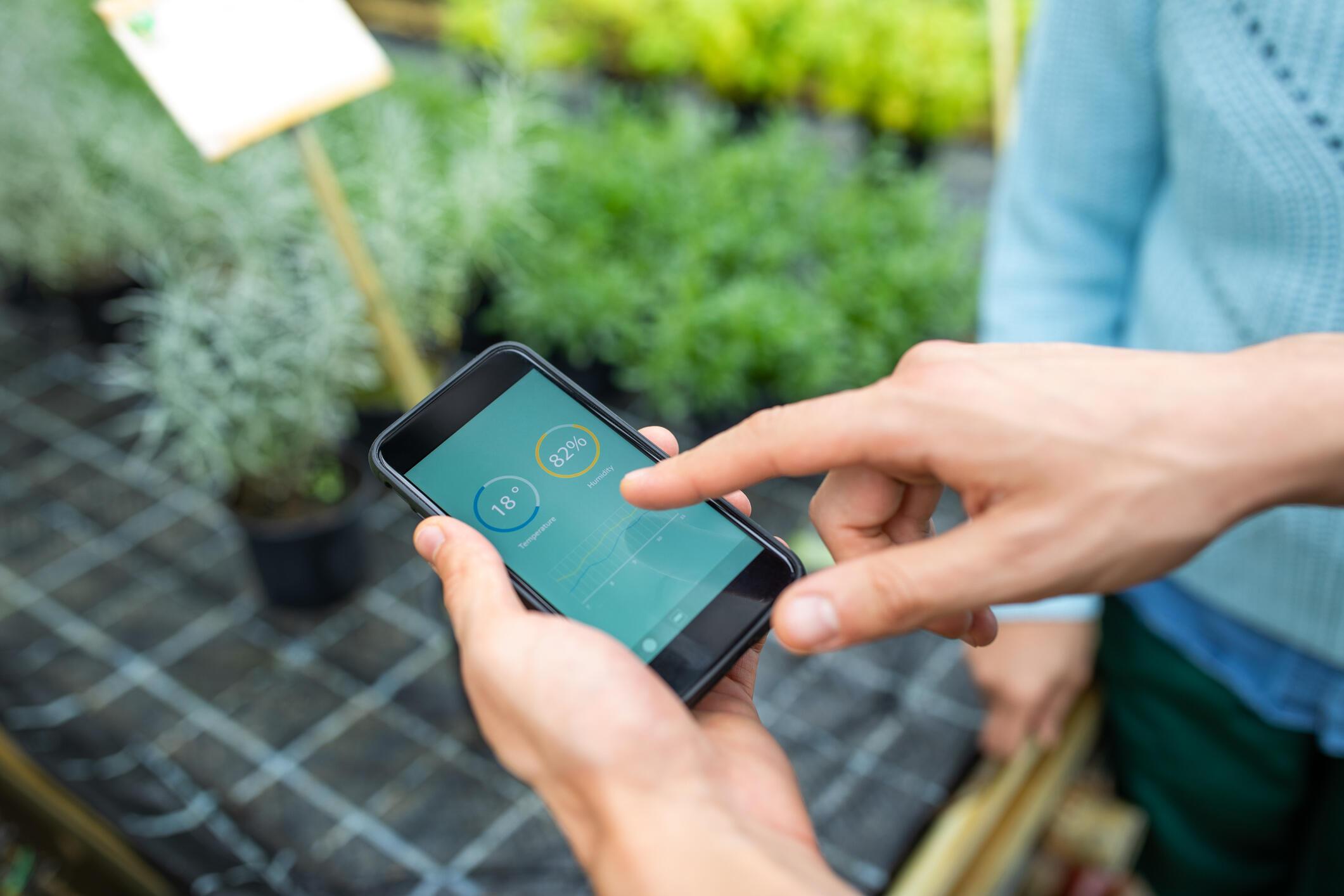 De l'agriculture connectée, aux plateformes sociales en passant par les produits cosmétiques bios, se trouve peut-être parmi ces jeunes créateurs d'entreprises l'un des futurs champions européens de la Net-économie et du développement durable.