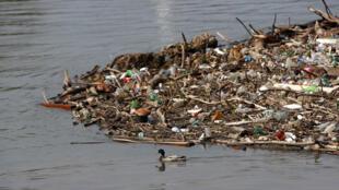Plastico natureza