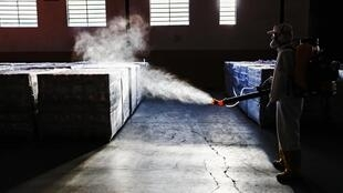 Un employé désinfecte des fournitures dans un entrepôt municipal de Curitiba, au Brésil, le 19 juin 2020.