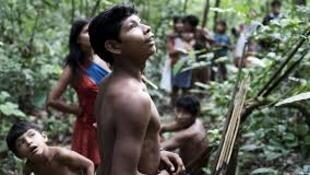 Os índios Awá vivem da caça e da pesca e são atacados com frequência pelos invasores de suas terras.