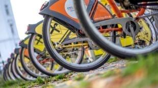 Des vélos en libre-service à la station Pilgramm, à Vienne.