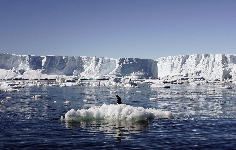 Pinguim em cima de bloco de gelo perto da estação francesa de Dumont d'Urville, ao leste da Antártica, em foto de 2010.