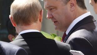 Петр Порошенко и Владимир Путин в Бенувилле 06/06/2014