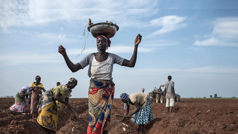 Wasu mata manoma a nahiyar Afrika.