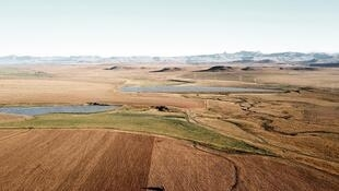 Aerial view of 500 hectars of Zunckel Farms in KwaZulu Natal with the backdrop of the Drakensberg mountain range.
