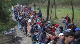 應對難民潮 丹麥計畫立法沒收難民貴重財產支付