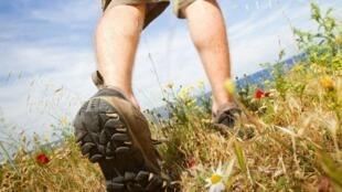 行走逐渐成为法国人日常生活中的一部分