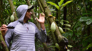 Dans la forêt amazonienne, Xiba est fier d'avoir appris à fermenter son cacao.
