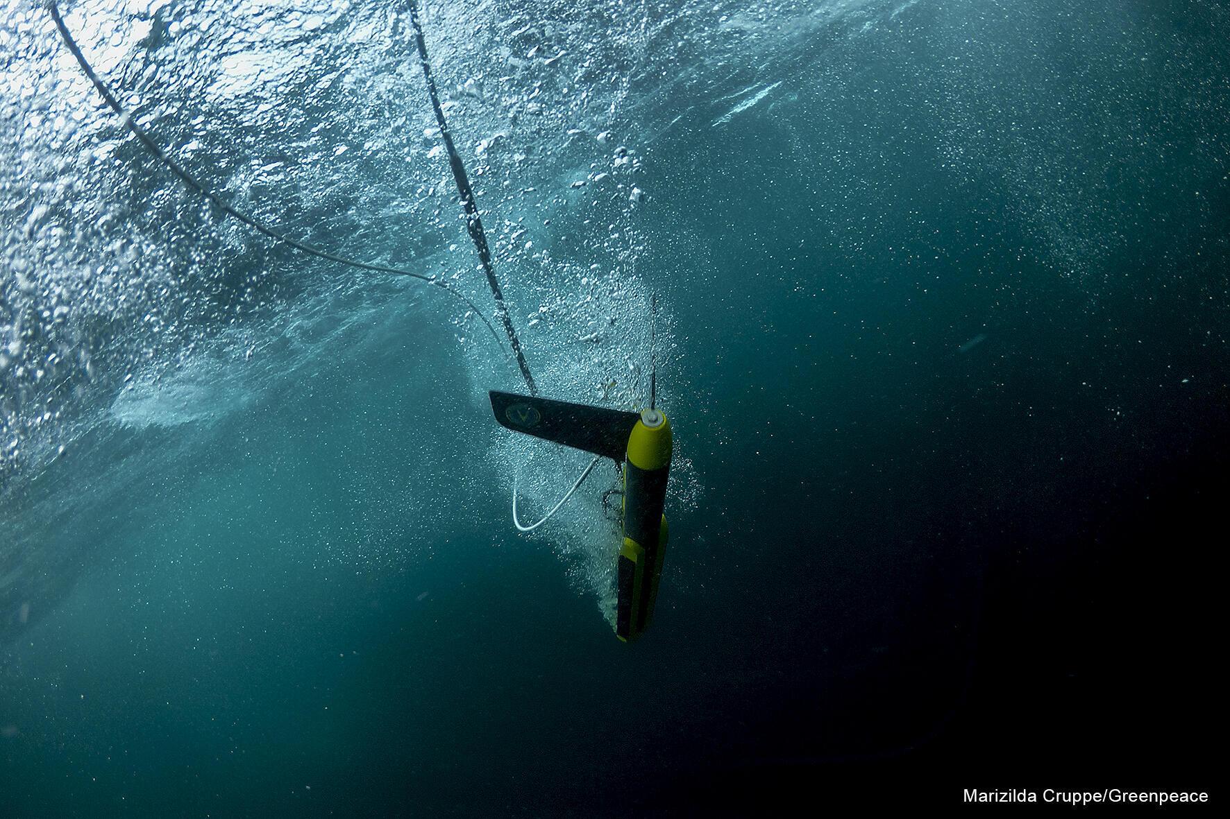 Mise à l'eau du CTD, une des sondes utilisées sur l'expédition