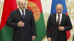 Tổng thống Belarus Alexander Lukashenko và Tổng thống Nga Vladimir Putin - REUTERS/Vasily Fedosenko