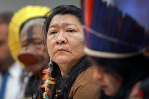 La diputada indígena Joenia Wapichana en la cámara baja en Brasília, el 25 de abril de 2019