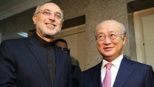 O chefe da agência atômica iraniana, Ali Akbar Salehi (à esquerda), cumprimenta Yukiya Amano, da AIEA, nesta segunda-feira 11 de novembro de 2013, em Teerã.