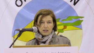 Florence Parly au Mali auprès des forces françaises de Barkhane, le 31 décembre 2017.