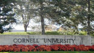圖為康奈爾大學外景