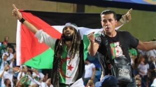 Des supporters algériens lors de la demi-finale au Caire face au Nigeria, le 14 juillet 2019.