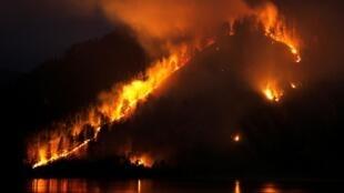 Лесной пожар на побережье Енисея недалеко от Красноярска. Лето 2019 г.