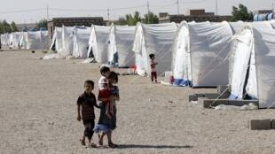 Лагерь сирийских беженцев в Ираке (Анбар), 15 августа 2012 года