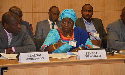 Présentation par la représentante du Sénégal de l'avancement du programme national pour la prévention et la gestion des crises alimentaires. Paris, le 16 avril 2014.