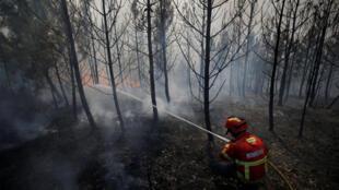 Os bombeiros ainda lutam contra o incêndio florestal que destrói a região de Pedrógão Grande, no centro de Portugal.