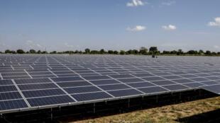 Les panneaux solaires de la centrale de Soroti lors de son inauguration, le 12 décembre 2016 en Ouganda.
