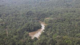Kisangani, Province Orientale, RD Congo, vue aérienne de la forêt et du fleuve Congo.