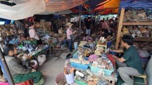 老撾首都萬象的一個草藥市場。 Un marché local où des herbes médicinales sont vendues à Vientiane au Laos, pays qui a largement recours à la médecine traditionnelle chinoise. (Image d'illustration)