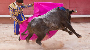 Bullfight in Arles, southern France