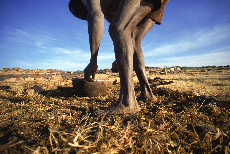 Un villageois plantant ses oignons dans le village de Sangha au Mali.