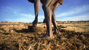 Durant la crise dans le nord du Mali, près de 400 000 personnes ont dû fuir le conflit. La plupart sont des agriculteurs et leurs familles.