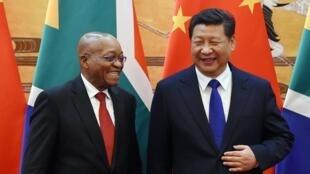 (資料圖片)中國國家主席習近平與到訪的南非總統祖馬,2014年12月4日,北京