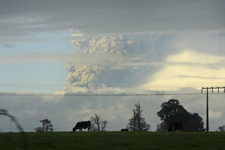 Sur la chaîne des Andes, près de la ville d'Osorno au sud du Chili, la colonne de fumée et de cendres crachée par le volcan Puyehue, le 4 juin 2011.