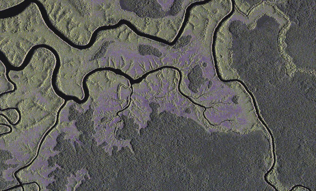 Une vue satellite de la forêt au sud-est de Libreville, prise par l'Agence aérospatiale allemande. D'ici à 2015, le Gabon, devrait avoir son propre système de surveillance du bassin du Congo