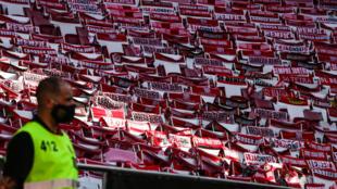 Estádio da Luz - Benfica - Futebol - Desporto - Football - Portugal - Liga Portuguesa