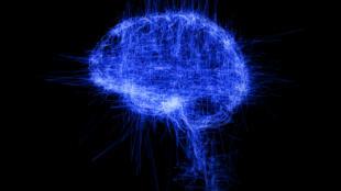 Pascal Haudressy, Brain, study, 2009 Écran, vidéo et plexiglas 115x80 cm.