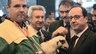 François Hollande inaugura o Salão da Agricultura de Paris