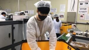 Entre 80000 et 100000 masques sortent chaque jour de l'entreprise Neomed.