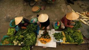 Các phụ nữ bán rau tại một chợ ở Hội An. Nhiều người Việt Nam vẫn giữ thói quen sử dụng tiền mặt.