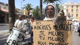 Manifestation d'apiculteurs français à Perpignan, pour dénoncer le taux de mortalité des abeilles sans cesse plus élevé et leur empoisonnement dû aux pesticides. Photo datée de juiin 2014.