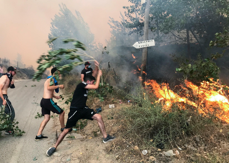 ALGERIA-wildfire