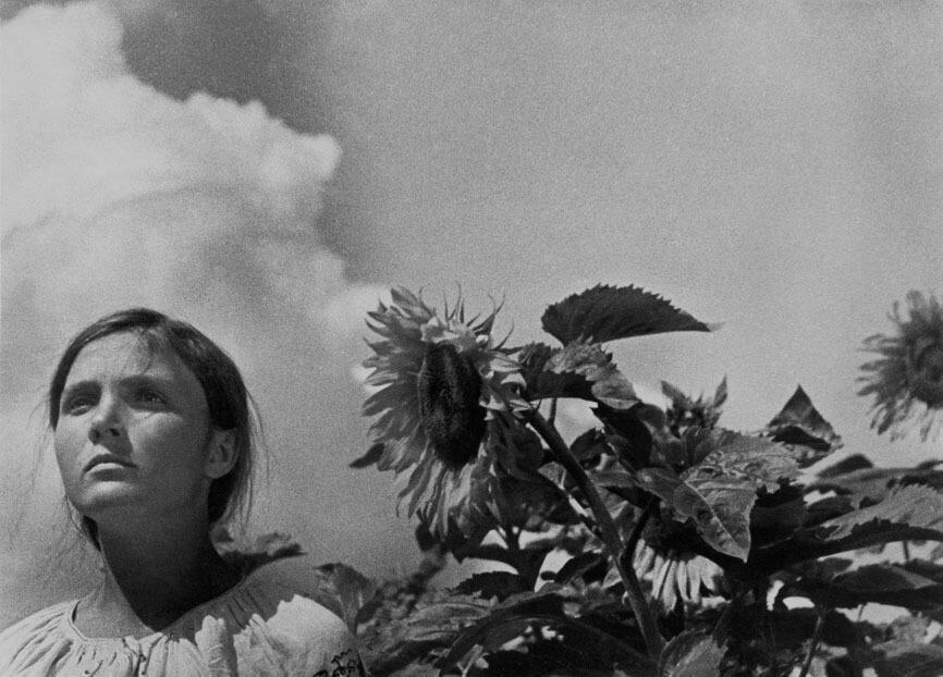 Кадр из фильма «Земля» (1930)