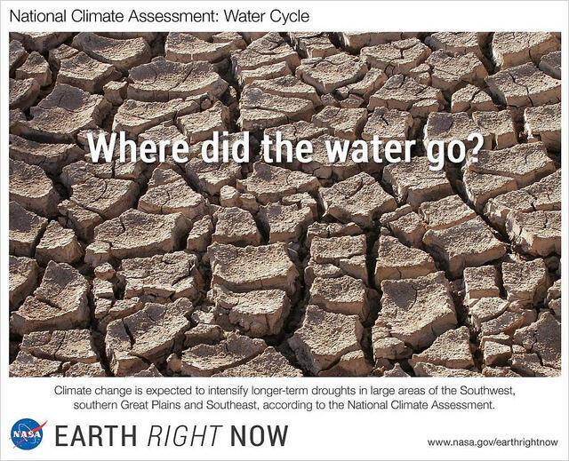 Cambio climático, mono cultivos, etc. Nuestra alimentación y soberanía alimentarias están amenazadas.