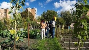 位于巴黎北郊的欧贝维利耶维尔蒂工人花园是这座城市从乡村向工业化城区的见证。2024巴黎奥运工程可能进一步蚕食这片城中田园