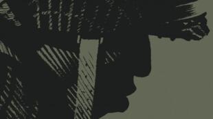 Détail de la couverture de la bande dessinée «Cinq branches de coton noir», de Steve Cuzor et Yves Sente.
