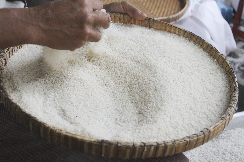 Gạo có nguồn gốc từ Fukushima gây lo ngại bị nhiễm phóng xạ.