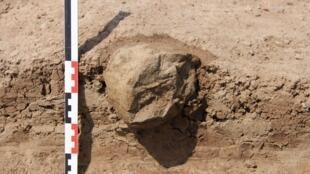 Un outil découvert dans le nord-ouest du Kenya près du lac Turkana, qui aurait pu servir de marteau pour ouvrir des noix ou tubercules.