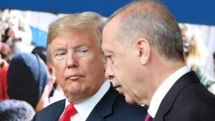 Donald Trump e Recep Tayyip Erdogan na cimeira da NATO de 11 de Julho em Bruxelas, Bélgica.